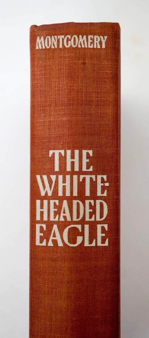 The White Headed Eagle