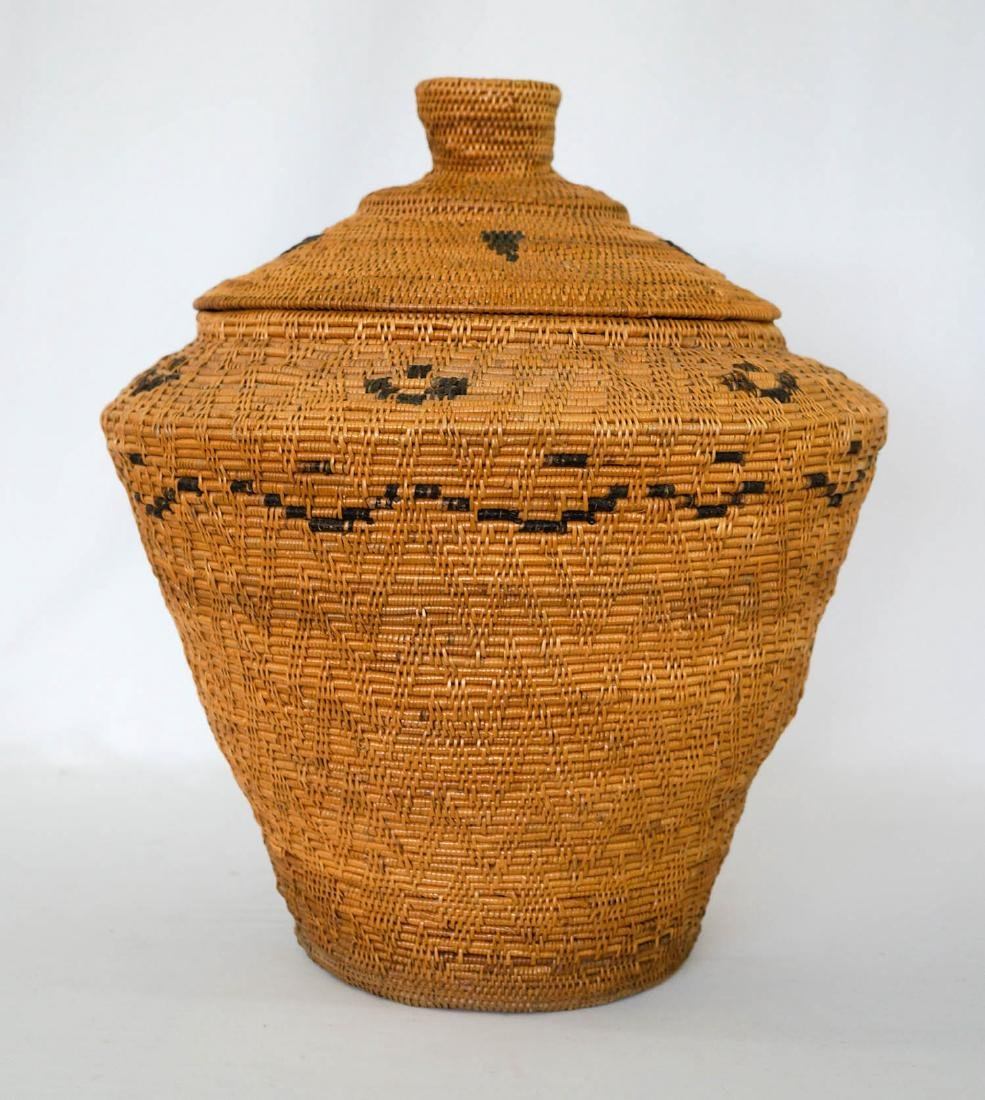 Large Covered Coiled Native Basket - 2