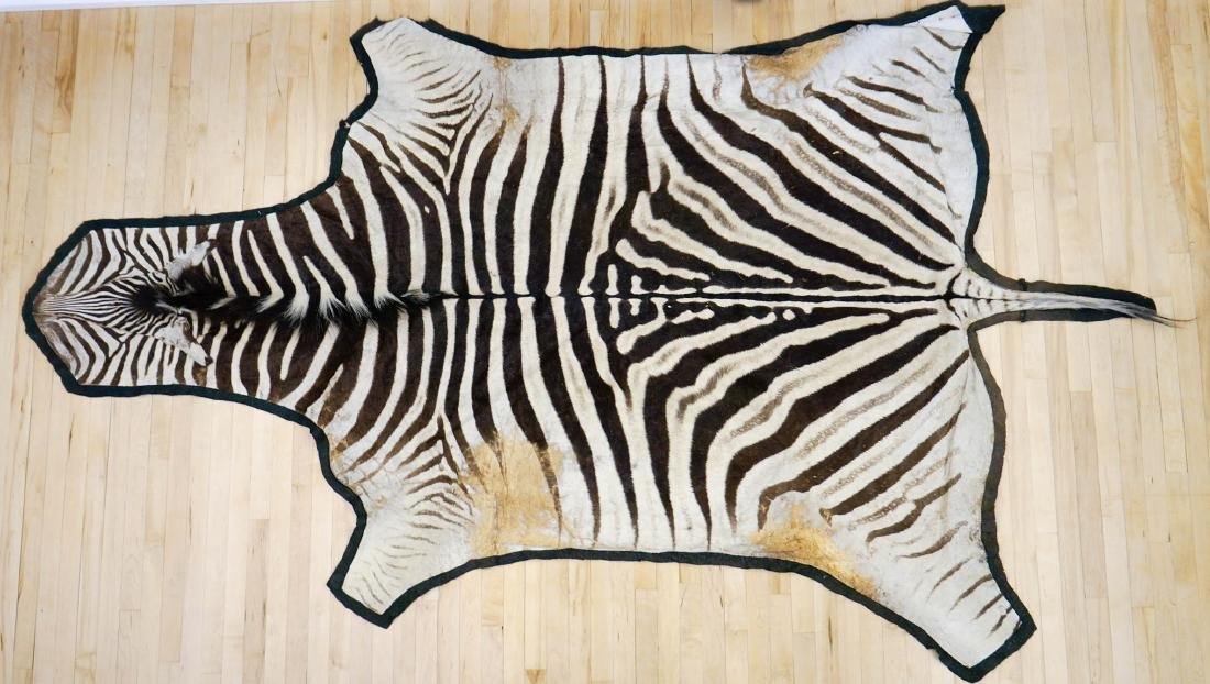 Zebra Hide Area Rug