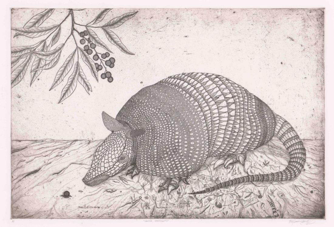 A Fine Artist's Proof Etching of Armadillo