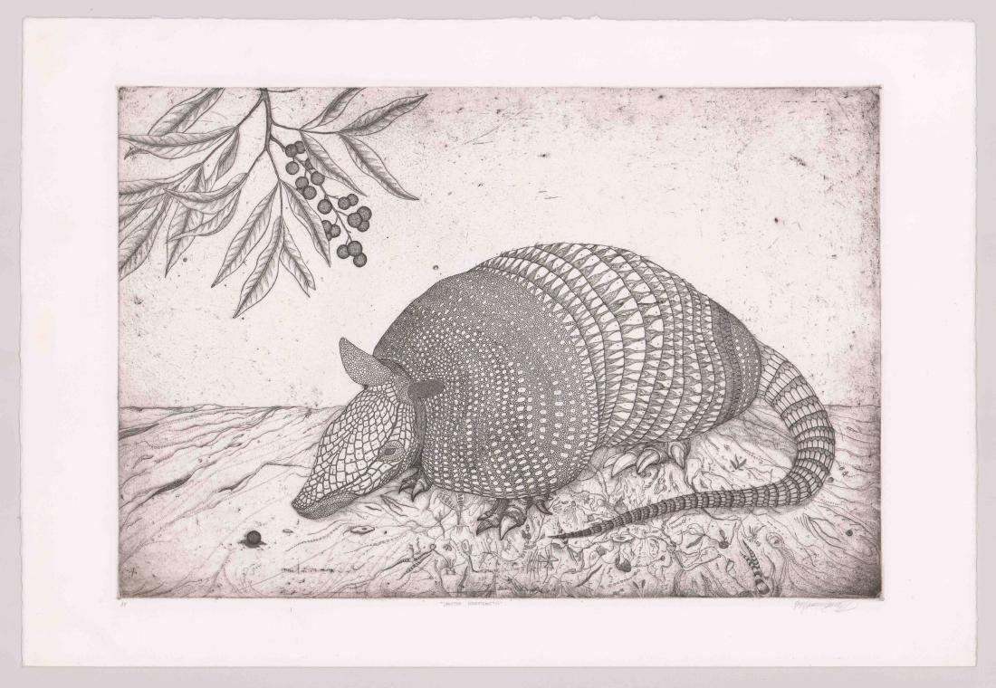 A Fine Artist's Proof Etching of Armadillo - 2