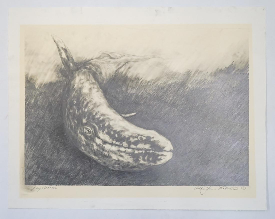 Alan James Robinson Original Art [Gray Whale] - 2
