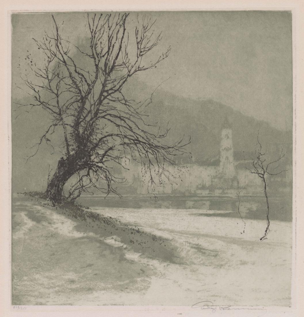 Luigi Kasimir [Castle Durnstein on the Danube]