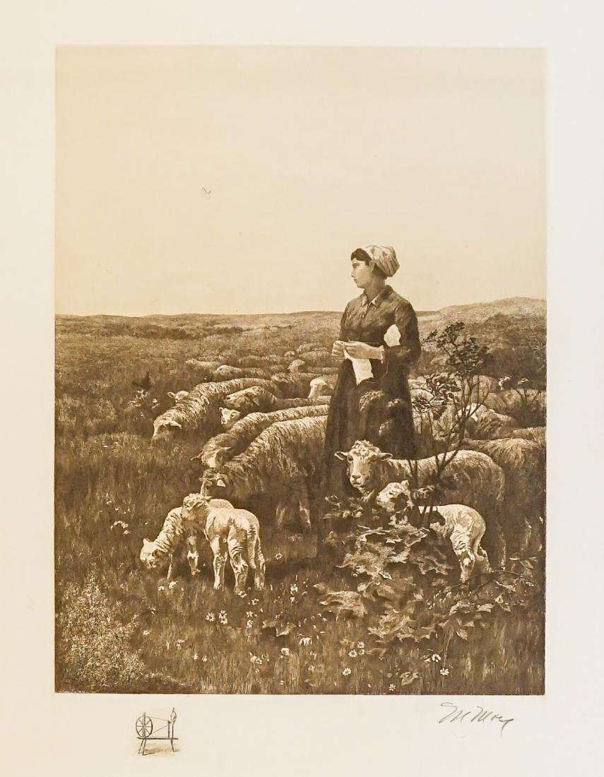 A Fine Large Signed Etching