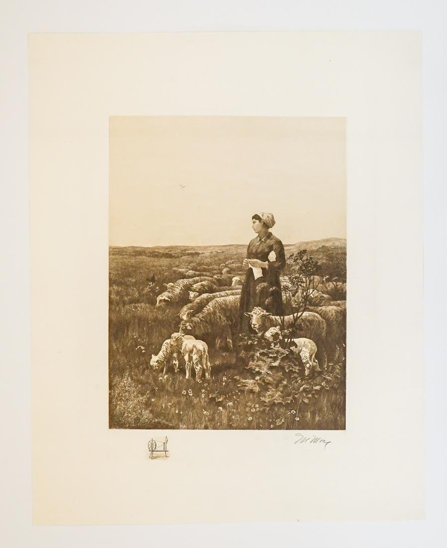 A Fine Large Signed Etching - 2