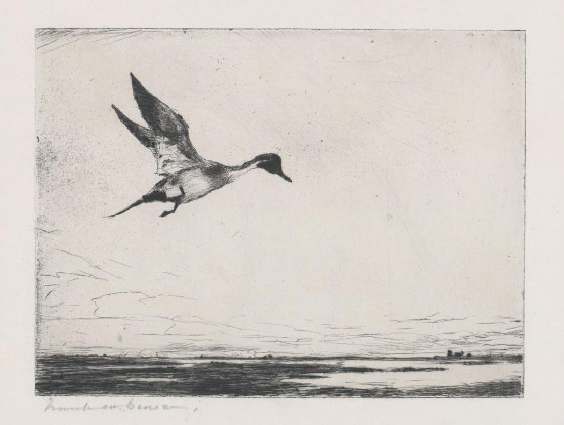 Frank Benson Signed Etching [Lone Pintail]