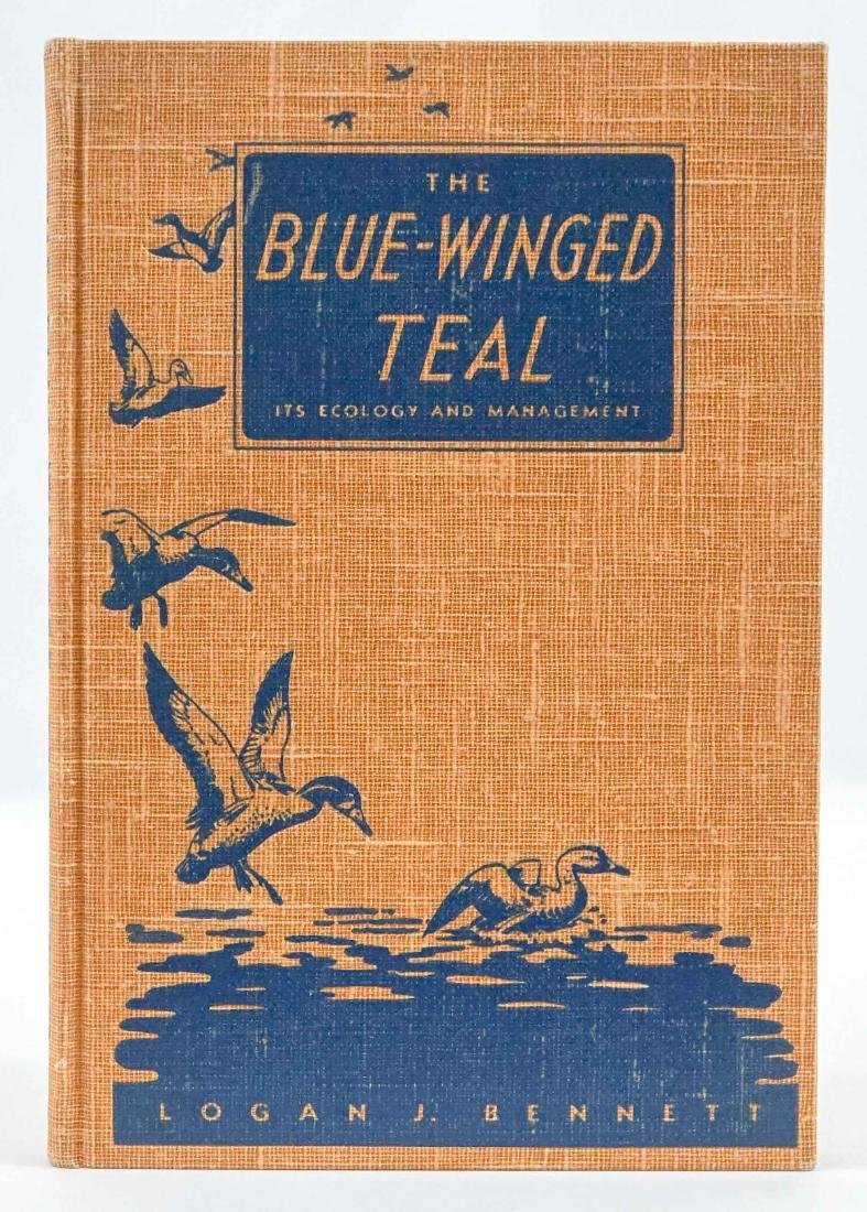 The Blue-Winged Teal 1938