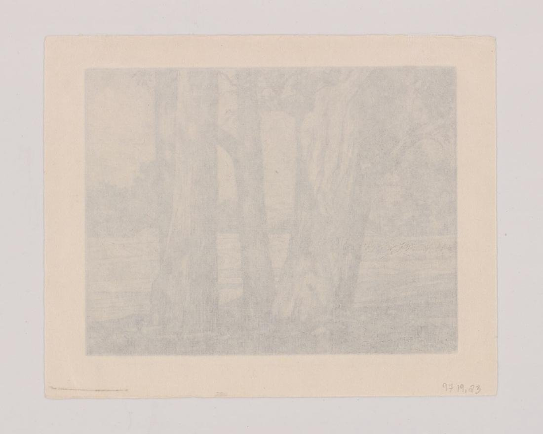 Luigi Lucioni Etching [Trees and Meadow] - 4