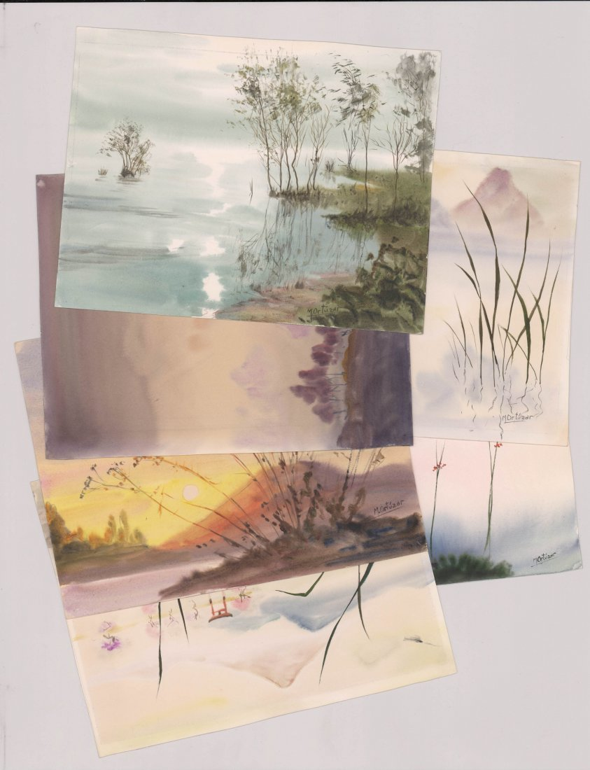 Mariano Ortuzar Watercolors