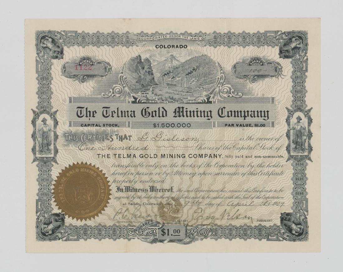 The Telma Gold Mining Company Stock (Colorado)