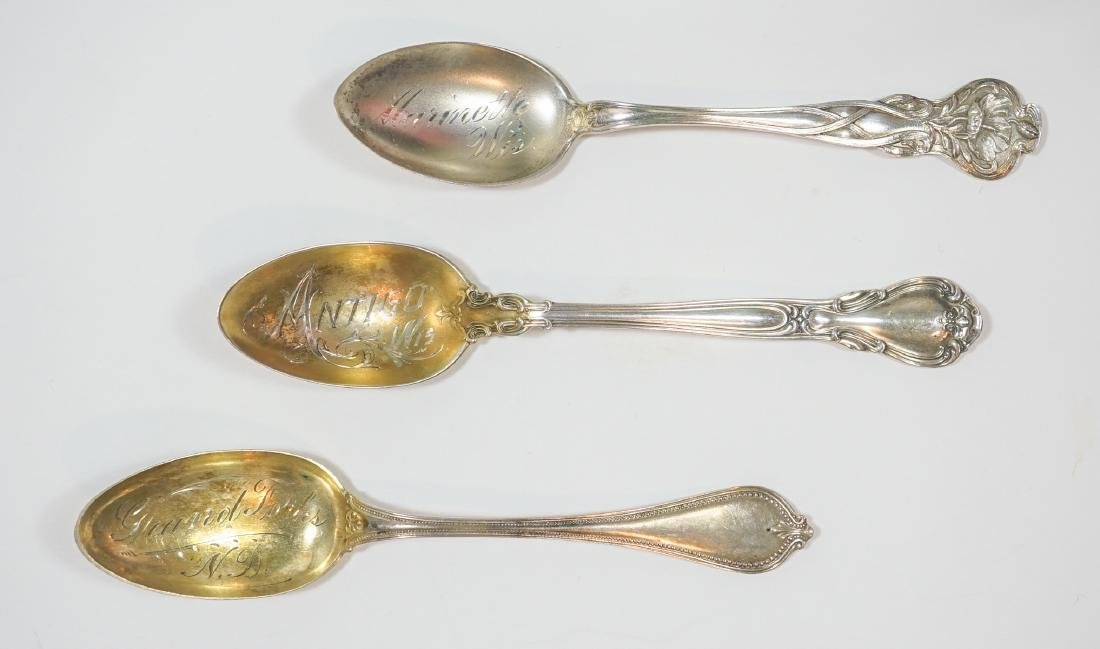 A Group of Sterling Souvenir Spoons - 6