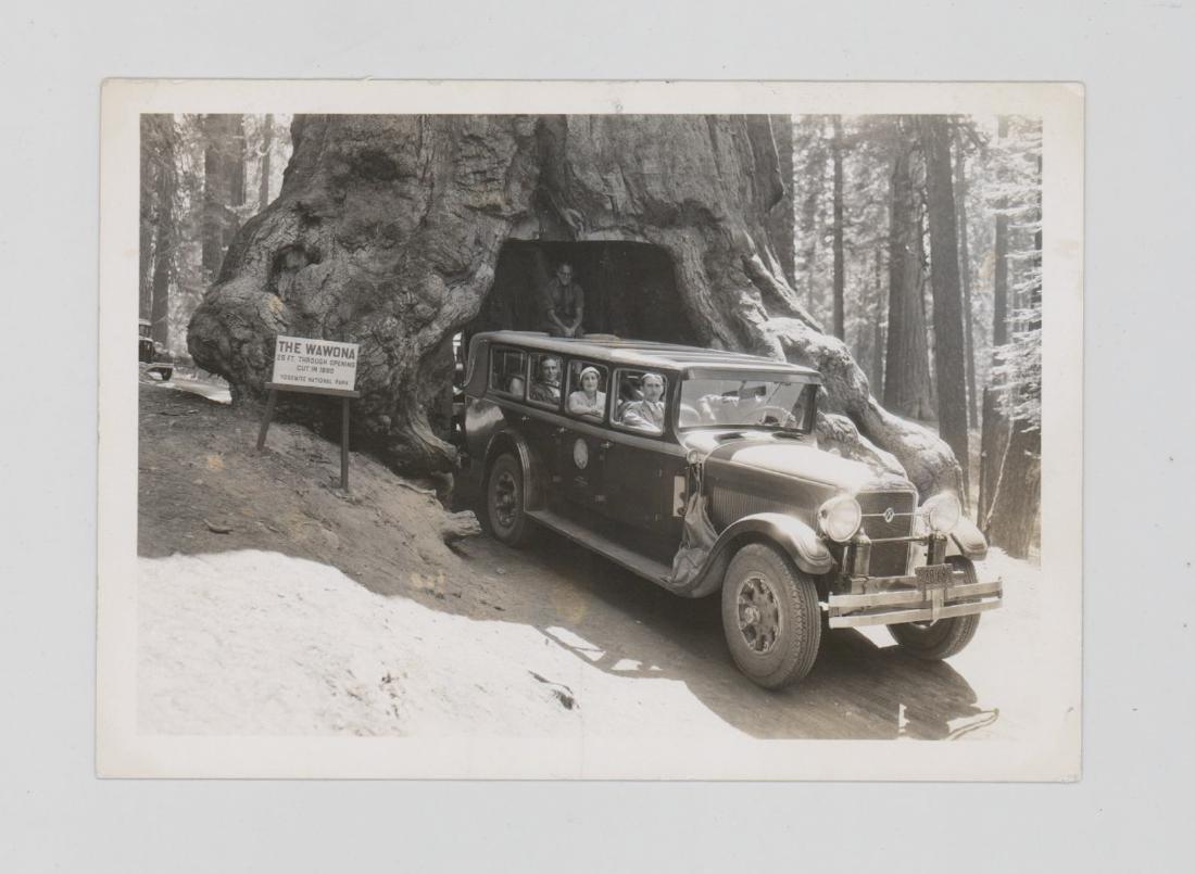 Eight Antique National Parks Photos - 8