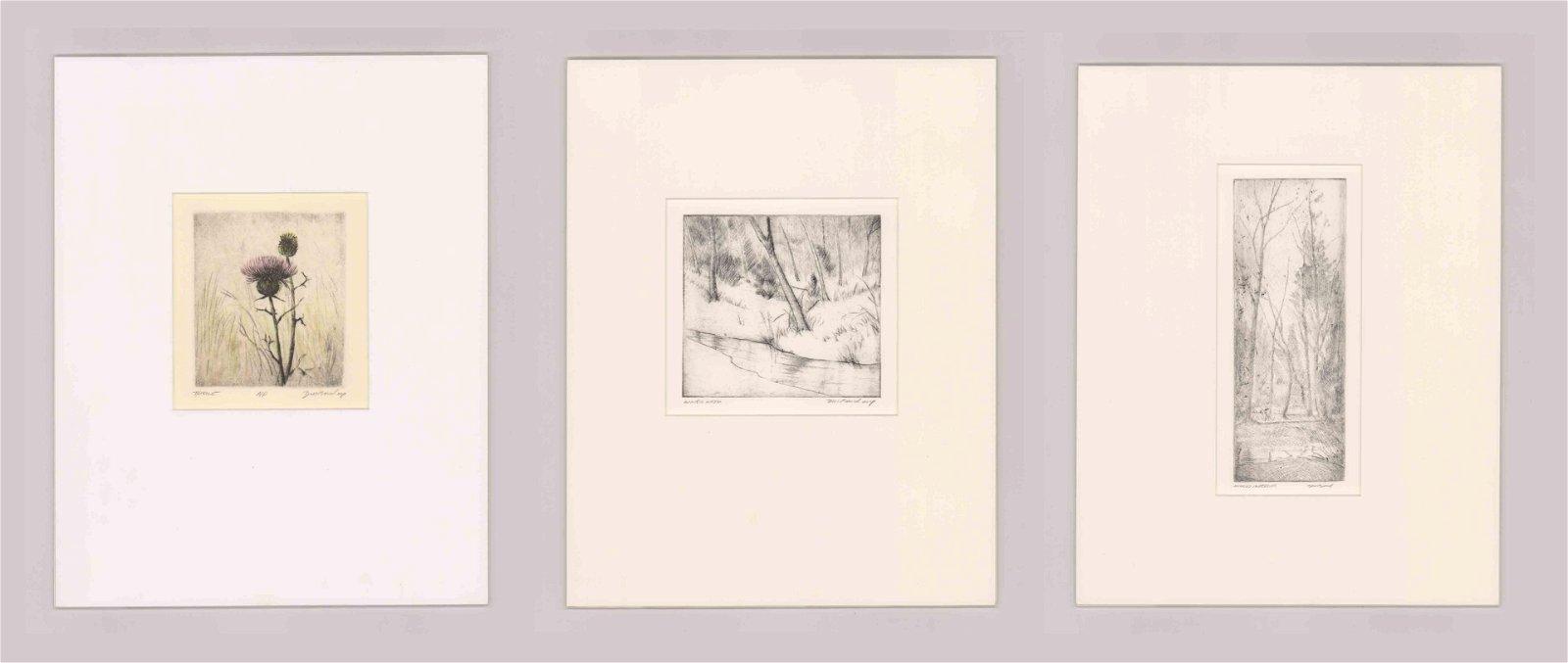 David M. Band Etchings [Landscape]
