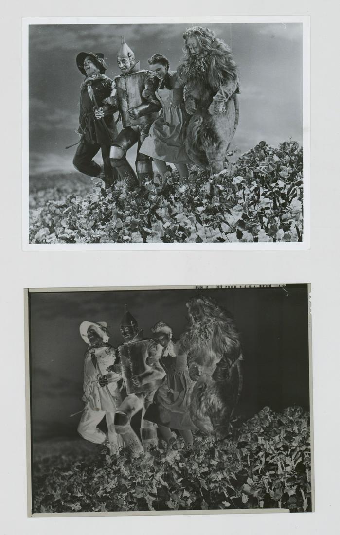 1949 'Wizard of Oz' Cast 8in x 10in Photo Negative