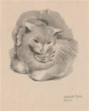 Mariette Lydis Lithograph Cat