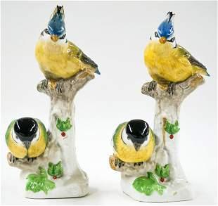 Dresden Pair of Porcelain Bird Figurines