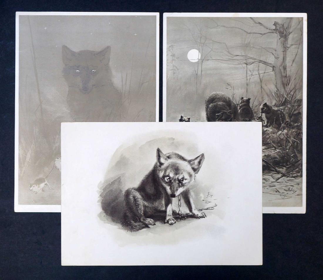 Ernest Seton (1860-1946) Three Antique Prints