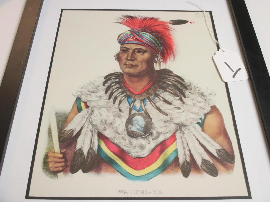 Indian Chief priint