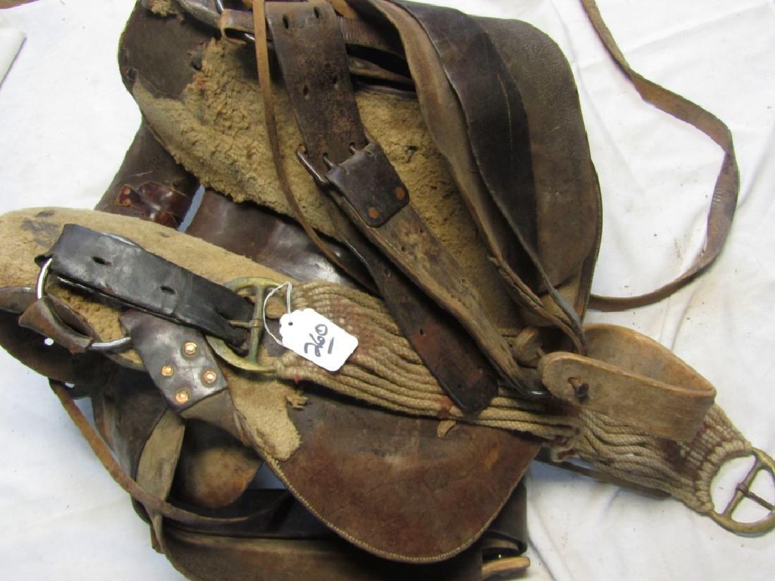 Saddle - 2