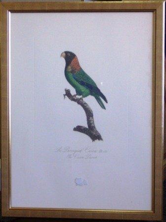 1022: Hand Coloured Ltd Ed. Prints (2)