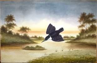 CALVERT, H H Forest Kingfisher, 1919. W/Clr 62