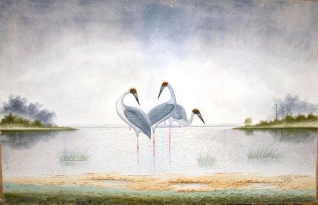 1004: CALVERT, H H  Sarus Cranes, 1919.  W/Clr  62x95 c