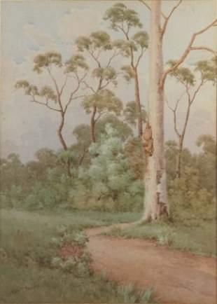 CAYLEY, Neville William (1886-1950) Bush Path wi