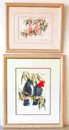 "O'LOUGHLIN, Nada (2) Pairs of Birds: ""The Major"