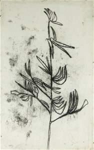 146: NOLAN, Sid (1917-1992)  Botanical Subject.  Signed
