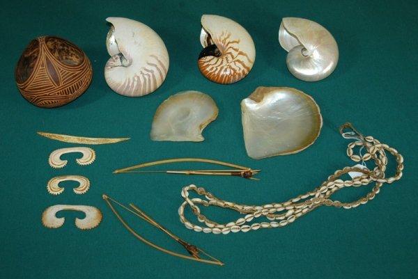 18: New Guinea Cowrie Necklace & 3 Nautilus Shells.  Al