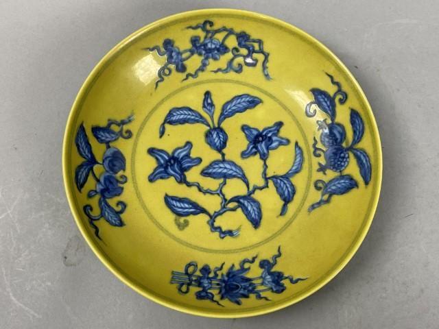 Flower pattern plate of Gardenia jasminoides Ellis in