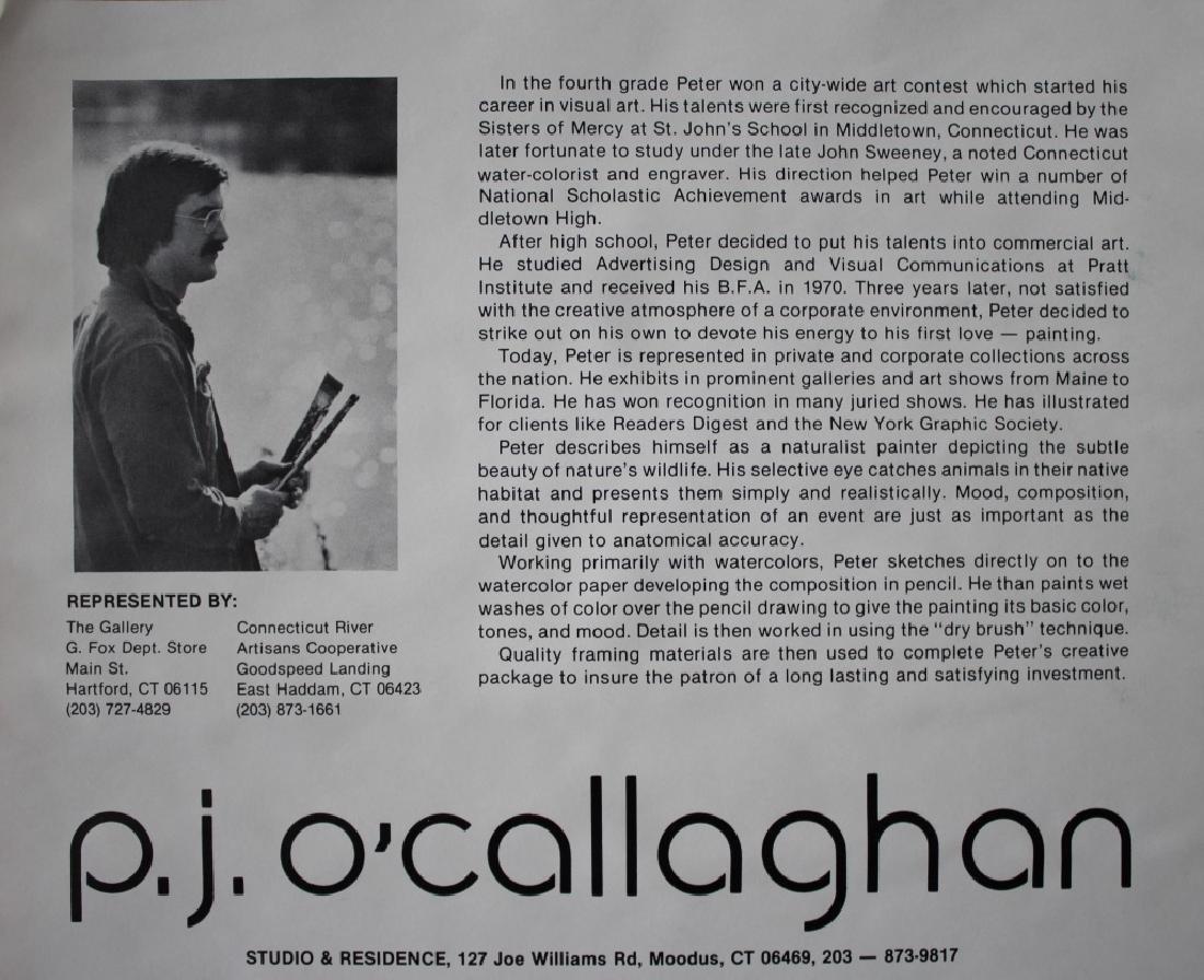 P J O'Callaghan (American) - 6