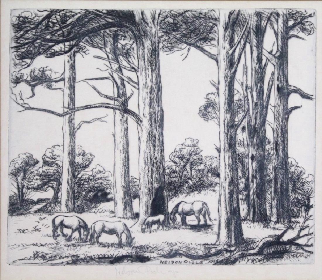 Horatio Nelson Poole (1884 - 1949)