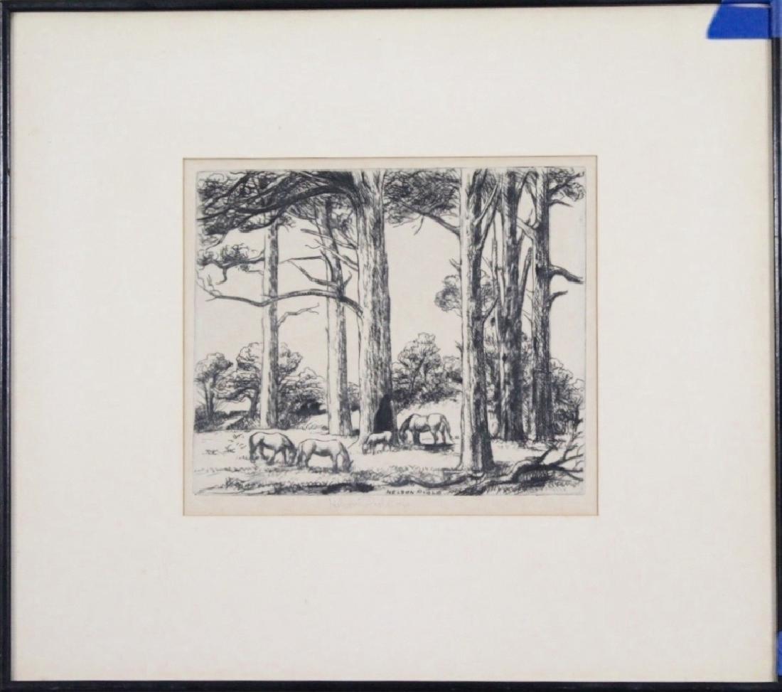 Horatio Nelson Poole (1884 - 1949) - 3