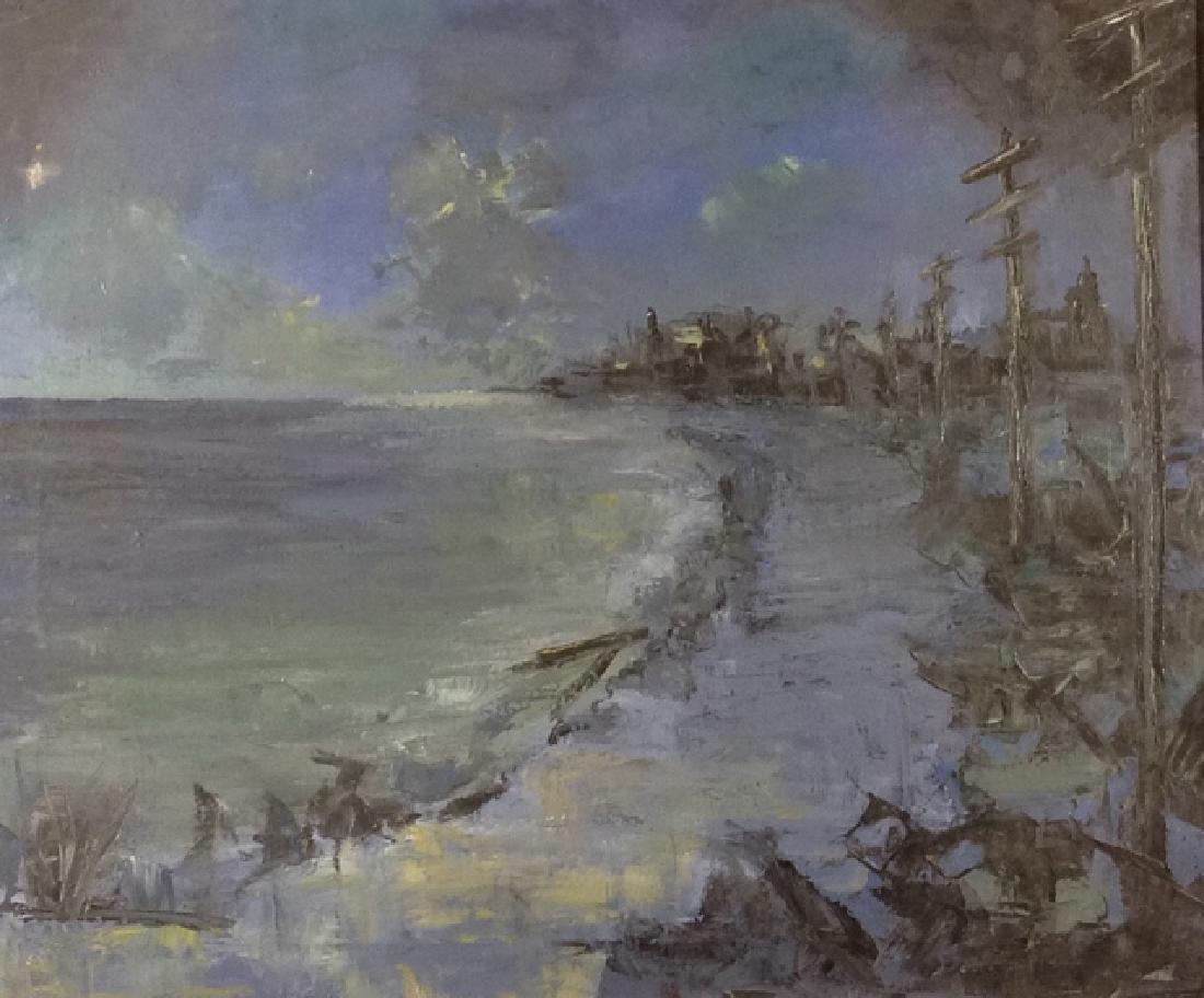 Moonlight and shoreline