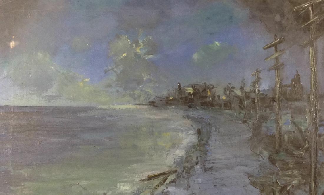 Moonlight and shoreline - 7