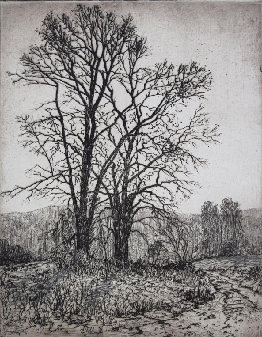 Robert Hogg Nisbet (1879-1961)