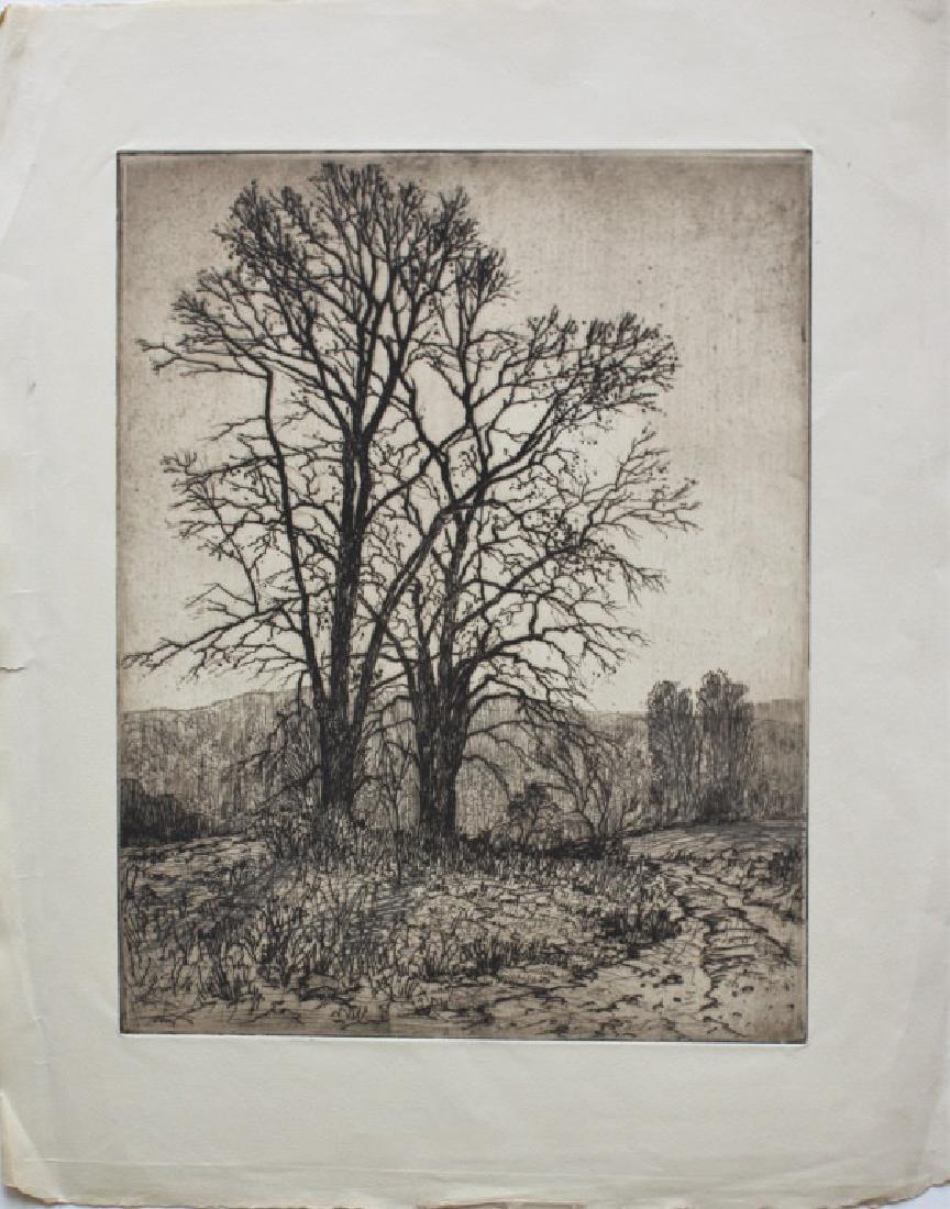 Robert Hogg Nisbet (1879-1961) - 2