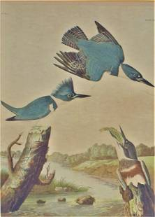 John James Audubon, Chromolitho