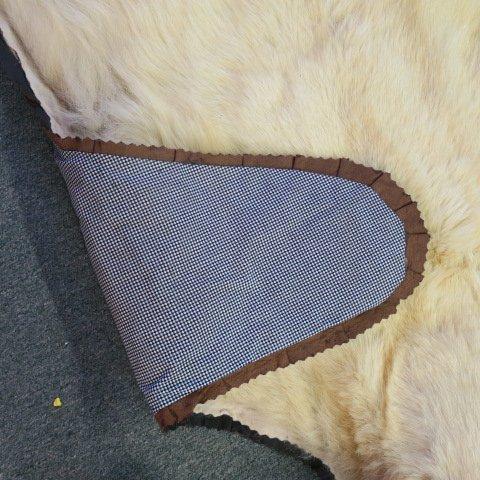 POLAR BEAR Skin Rug - Taxidermy - 4