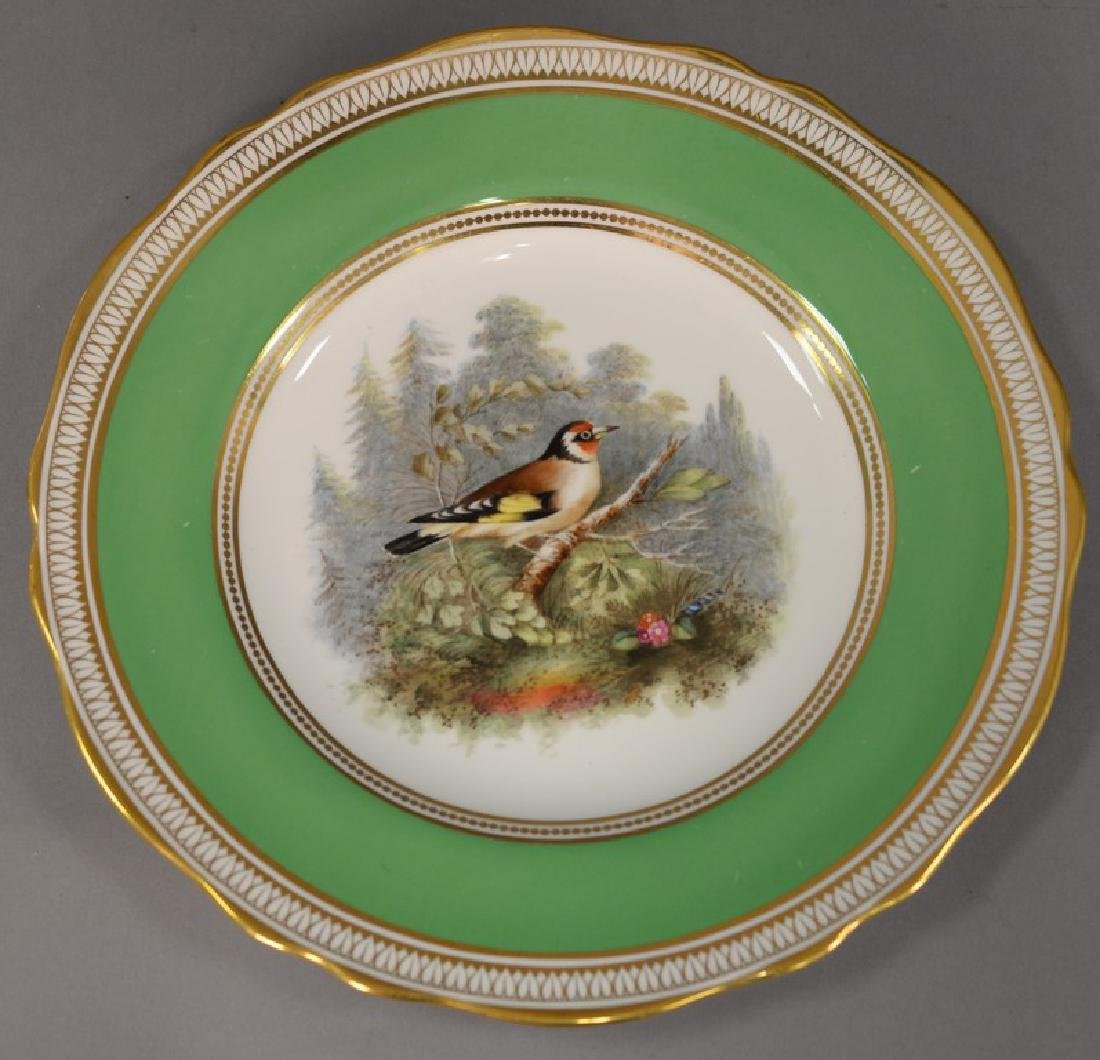 Set of six Spode hand painted bird plates. dia. 9in.