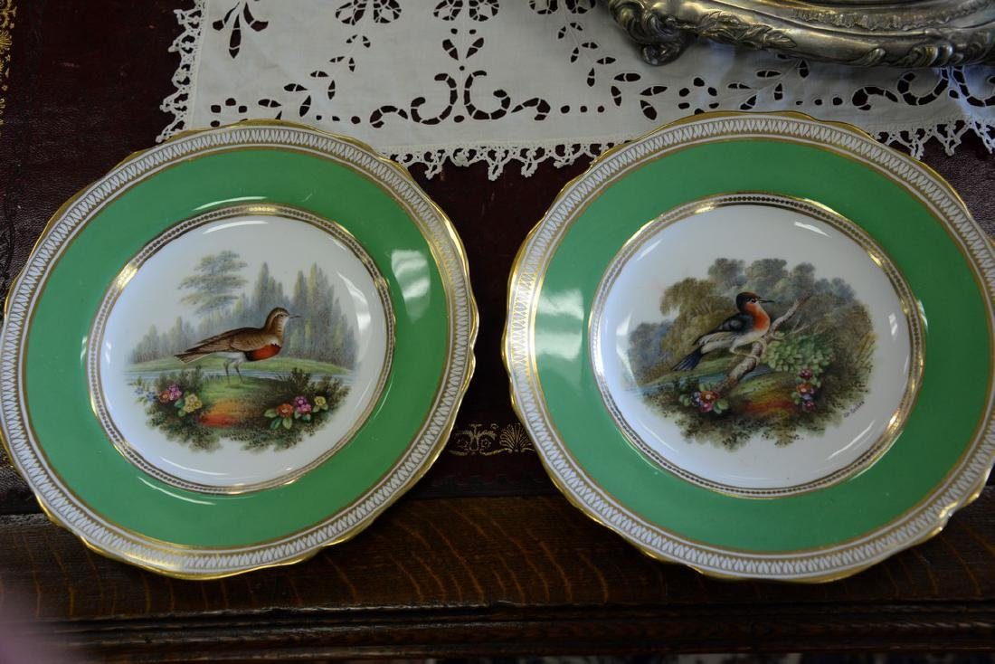 Set of six Spode hand painted bird plates. dia. 9in. - 3