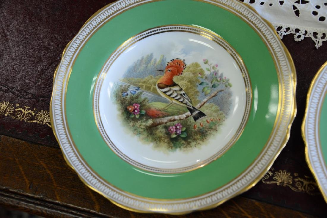 Set of six Spode hand painted bird plates. dia. 9in. - 4