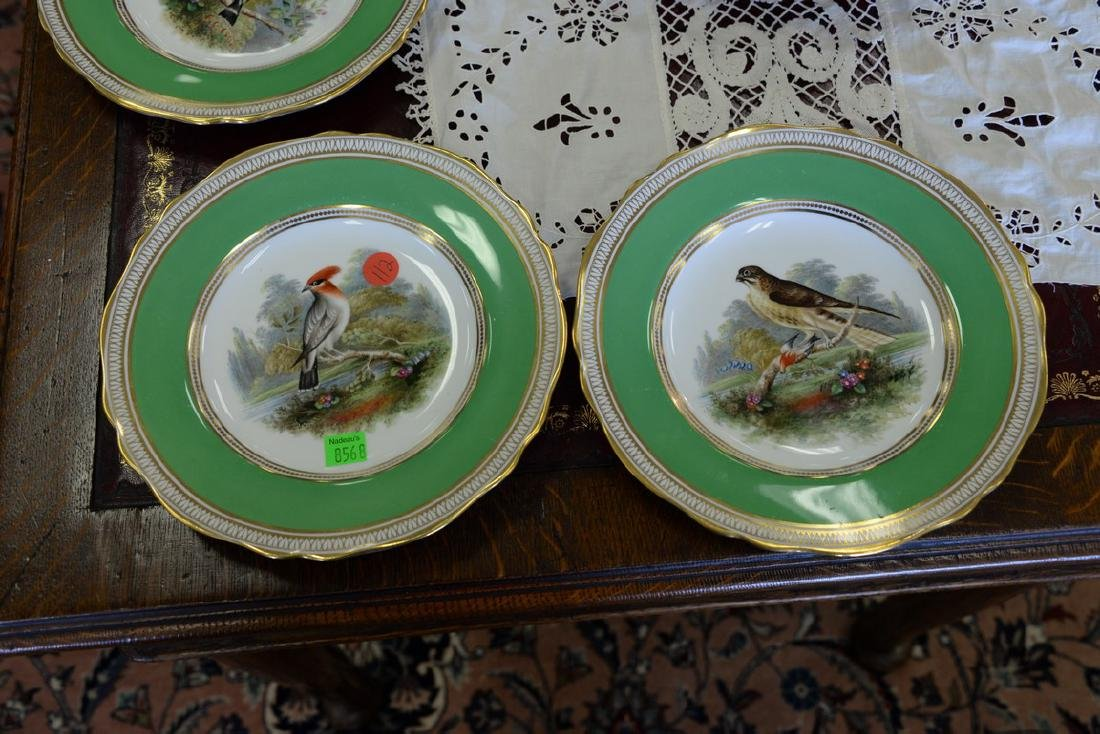 Set of six Spode hand painted bird plates. dia. 9in. - 5