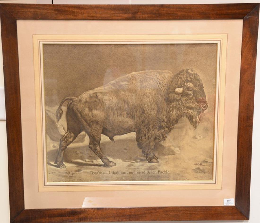 """Union Pacific lithograph of a buffalo """"The Oldest"""