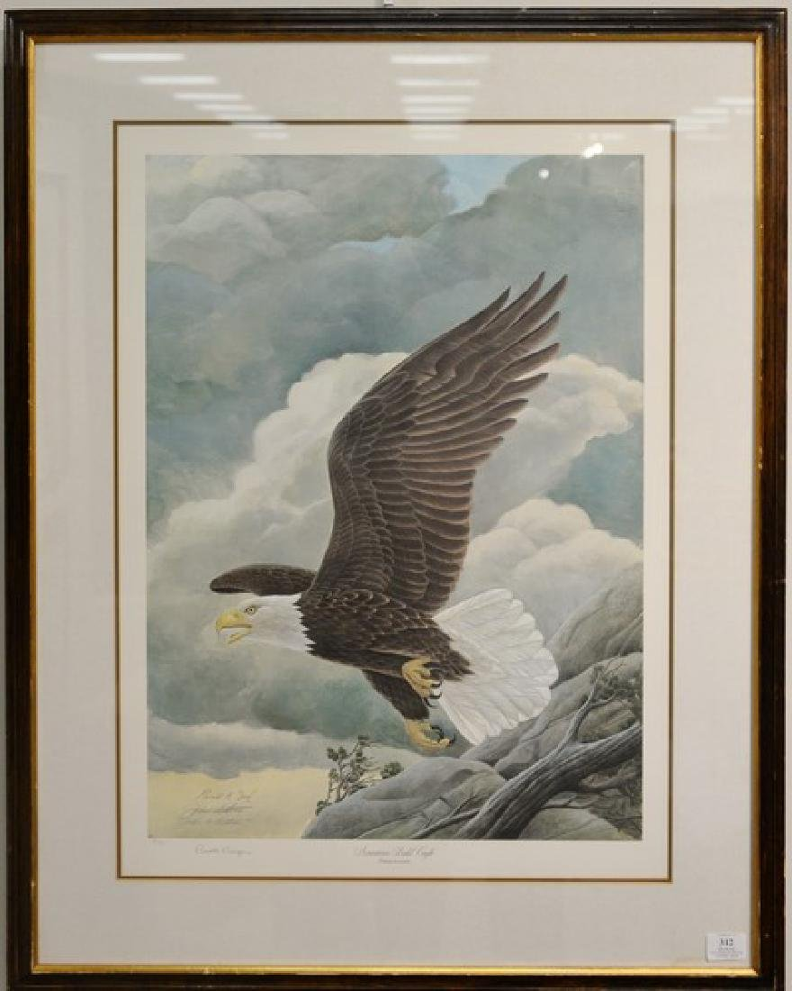 """American Bald Eagle"" framed limited edition print,"
