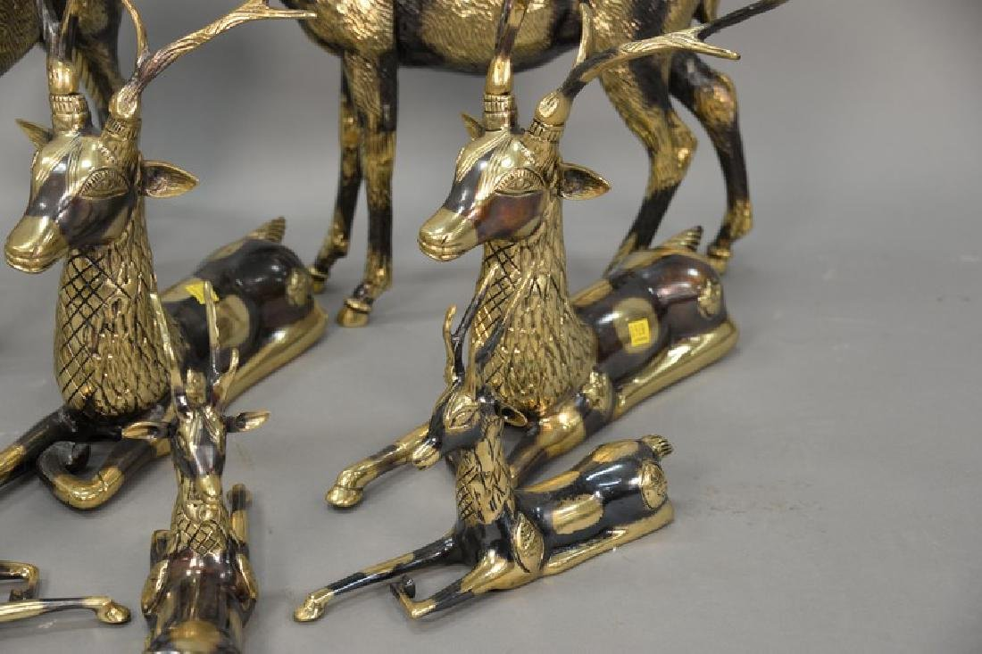 Eight piece Continental brass deer grouping. largest: - 6