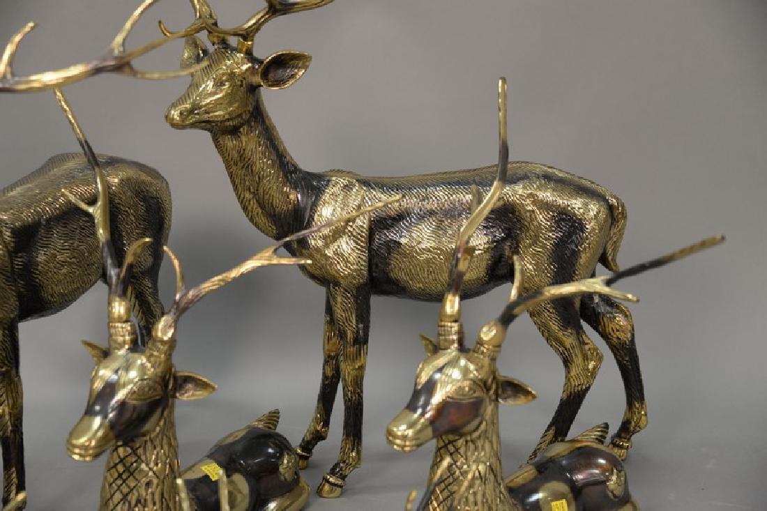 Eight piece Continental brass deer grouping. largest: - 7