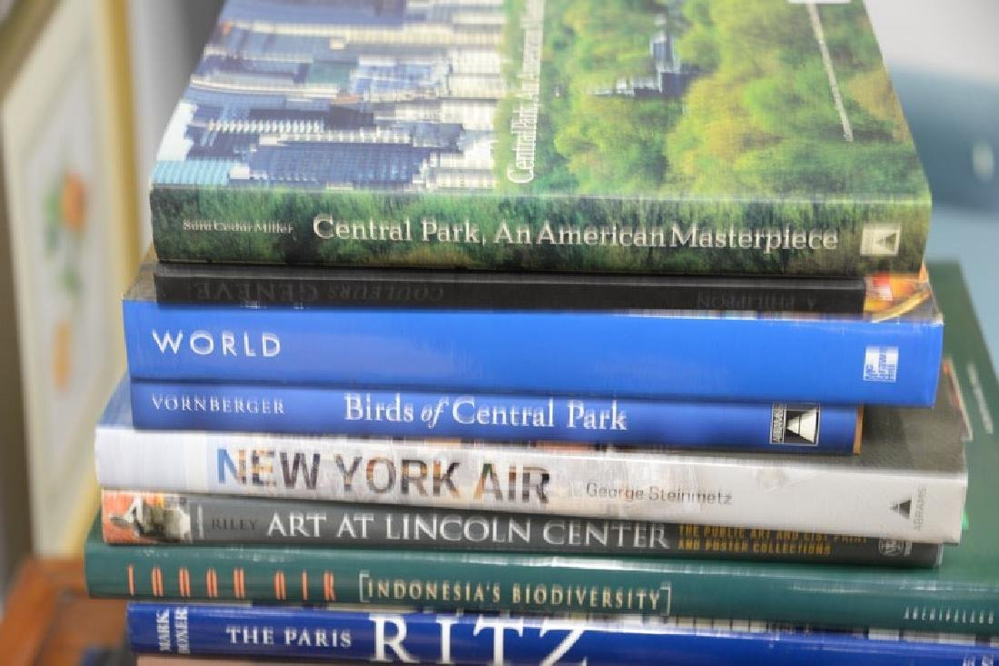 Fifteen art themed coffee table books to include Suores - 2