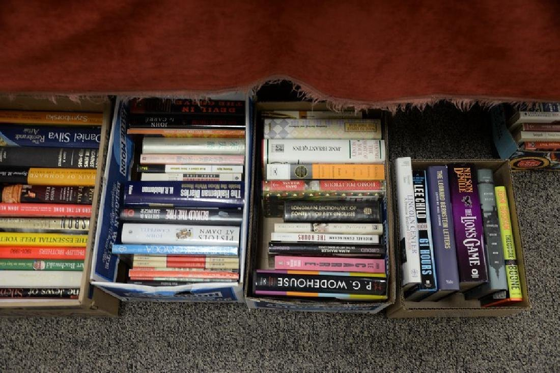 Eighteen boxes of miscellaneous books, mostly hard - 2